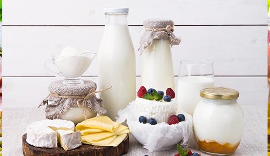 trasporto-latticini-yogurt-formaggi